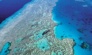 Some of Australia's environmental jewels such as the Great Barrier Reef are at risk from climate change.