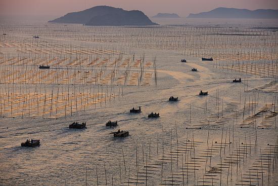 Picture of seaweed farmers on China's Fujian coast