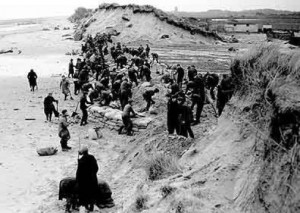 Rebuilding the dunes after the 1953 floods