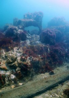 Europe's longest chalk reef, off Sheringham, could become a marine conservation area.