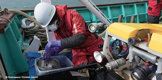 Greenpeace radiation specialist Jacob Namminga on board research vessel off the coast of Fukushima Daiichi, removing marine sediment sample collected by Remotely Operated Vehicle, March 2016. Greenpeace / Christian Aslund