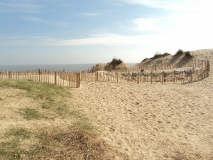 Winterton Great Valley Protected3