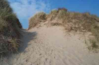Damage caused by walking through dunes at Aberdovey